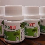 Movit Kelor